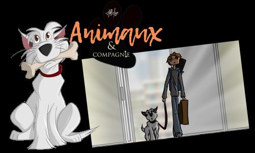 Animaux & compagnie : saison 1 épisode 2