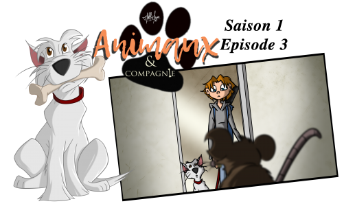 Animaux & compagnie : saison 1 épisode 3